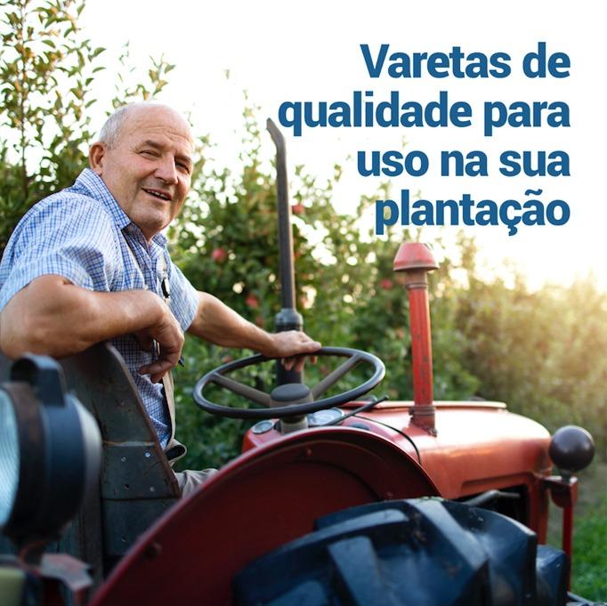Varetas de qualidade para uso em plantações